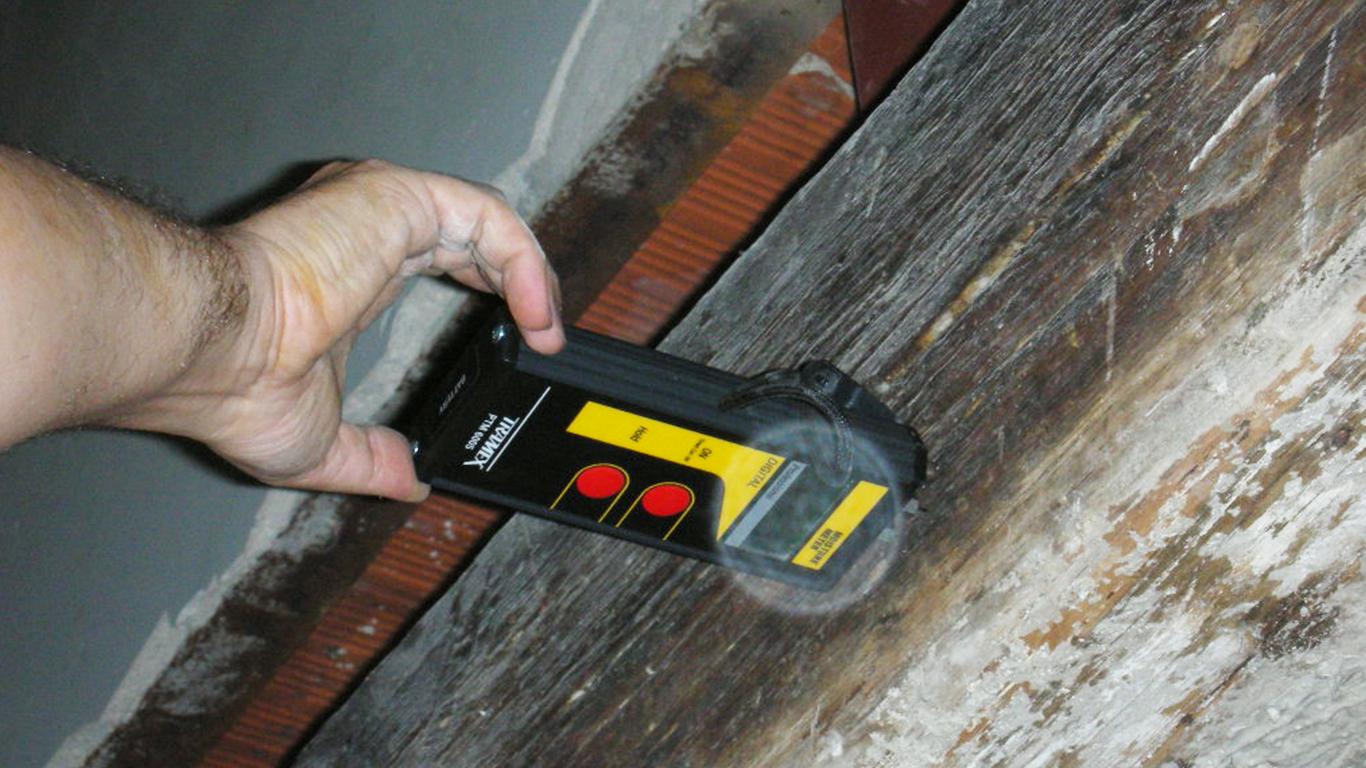 strumento indagi su legno